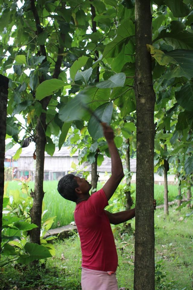 Small enterprises: Basis of prosperity